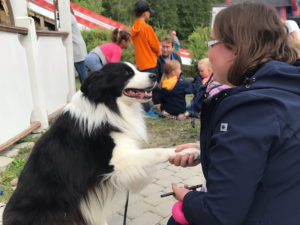 Hymyilevä nainen pitää koiraa kädestä lapsiperheen istuessa taustalla Vekkulit Vestarit -tapahtumassa